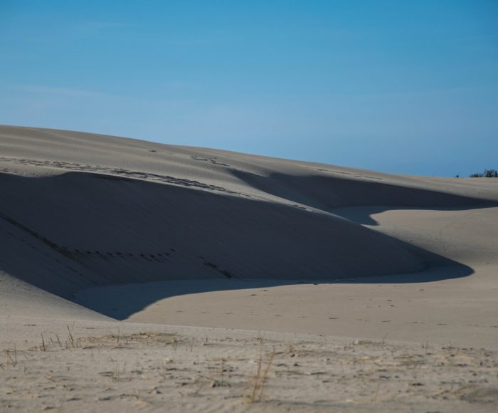 Kaszubski lud bagienno-pustynny 10