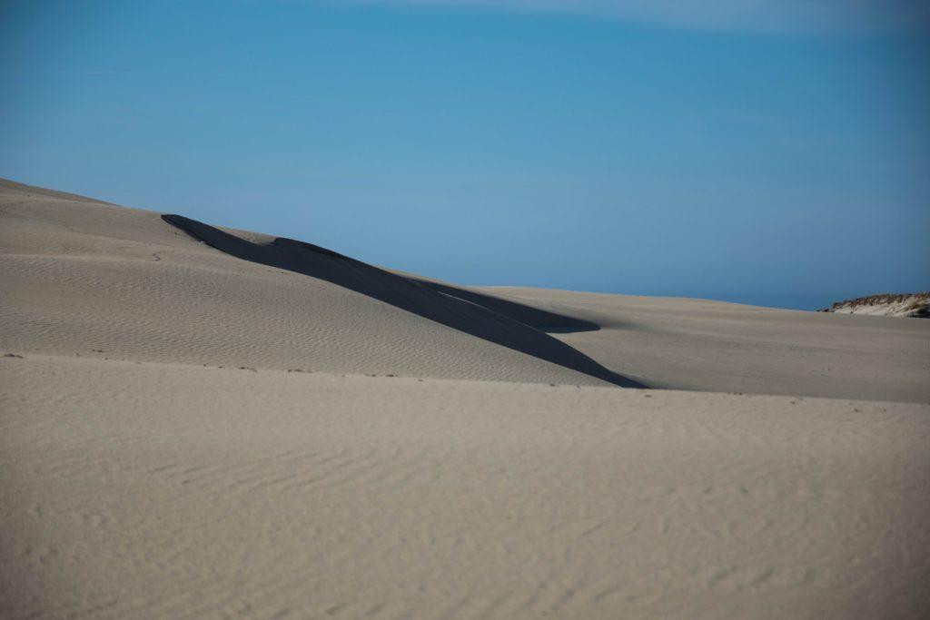 Kaszubski lud bagienno-pustynny 9