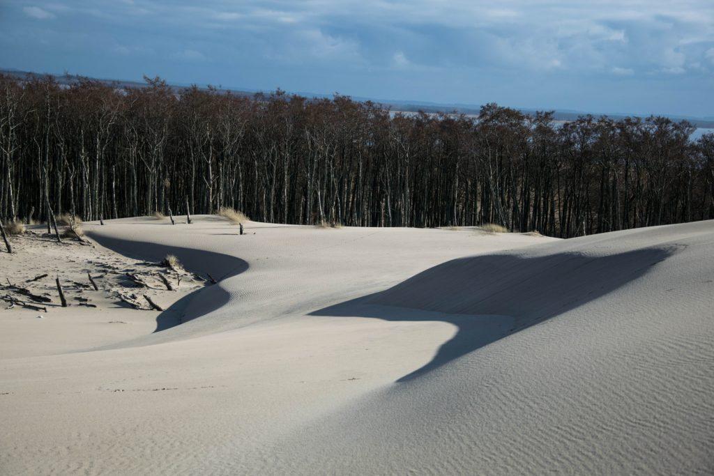 Kaszubski lud bagienno-pustynny 8