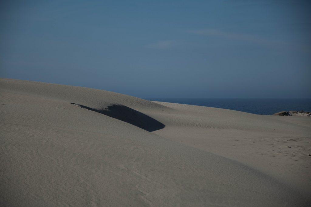 Kaszubski lud bagienno-pustynny 6