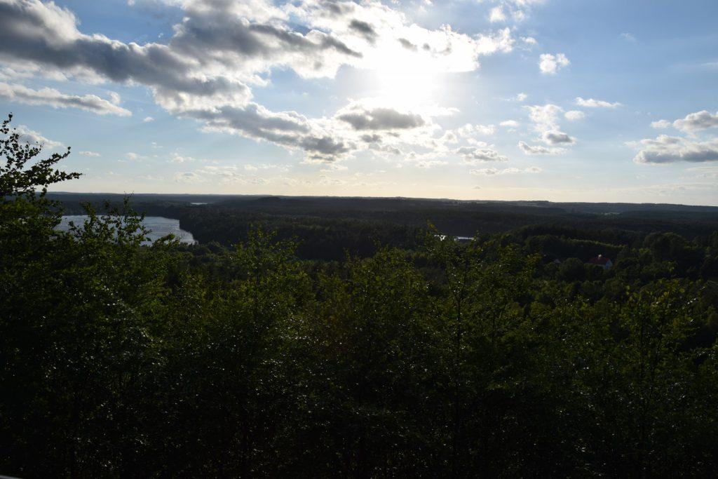 Lasy Mirachowskie - widok z Góry Zamkowej