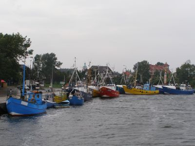 Jastarnia, świeża ryba w porcie. Rejsy po Zatoce Gdańskiej