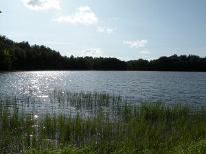 Jezioro Stary Staw, źródło: wikipedia.org