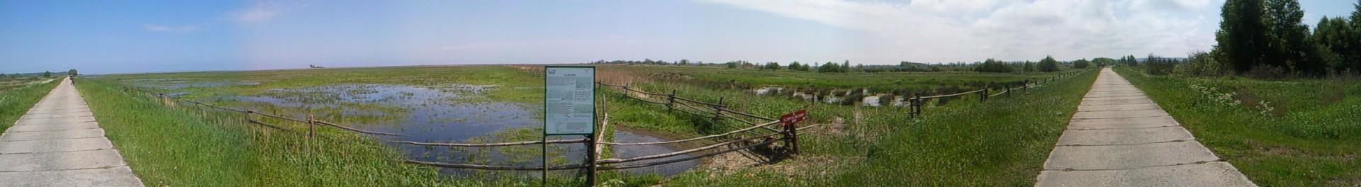 Rezerwat przyrody Beka, źródło: Wikipedia, autor: Arturbac