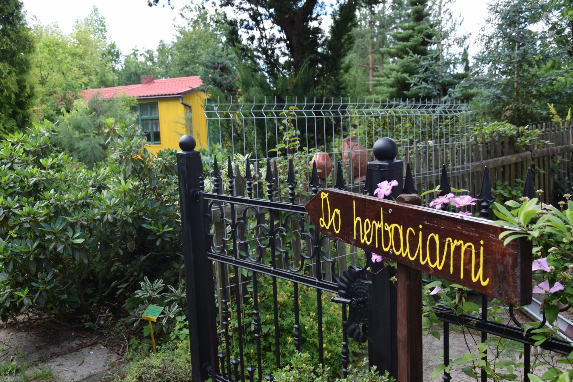 Gołubie. Ogród Botaniczny, rośliny ozdobne, lecznicze, arboretum 8