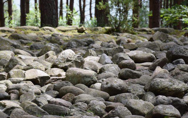 """Węsiory. Rezerwat archeologiczny """"Kamienne Kręgi"""", kamienna zagadka 4"""