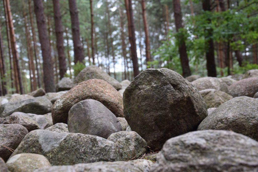 """Węsiory. Rezerwat archeologiczny """"Kamienne Kręgi"""", kamienna zagadka 3"""
