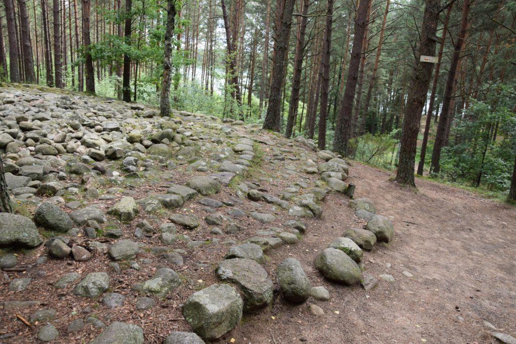 """Węsiory. Rezerwat archeologiczny """"Kamienne Kręgi"""", kamienna zagadka 2"""