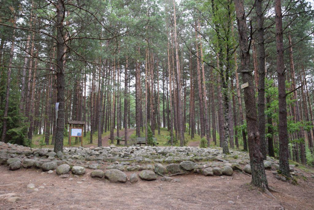 """Węsiory. Rezerwat archeologiczny """"Kamienne Kręgi"""", kamienna zagadka 1"""