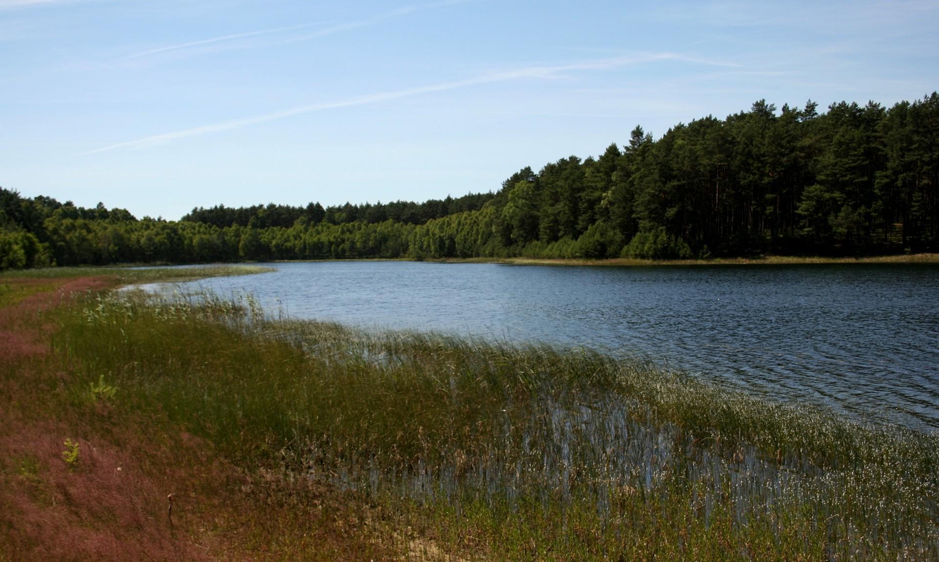 """Park Narodowy """"Bory Tucholskie"""" z siedzibą w miejscowości Charzykowy"""