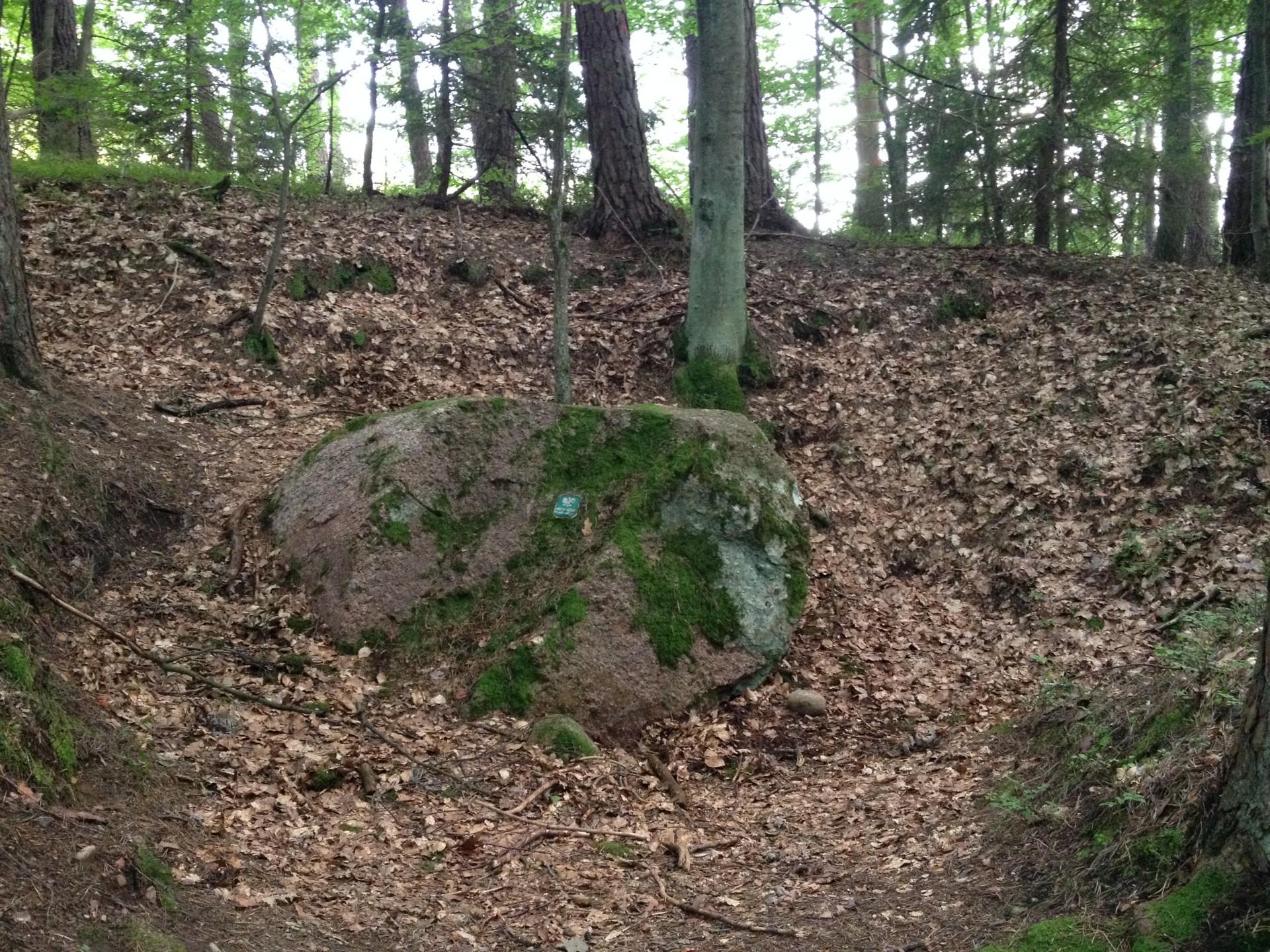 Diabelski Kamień. Okolice Lipusza Autor: Lucyna Szomburg