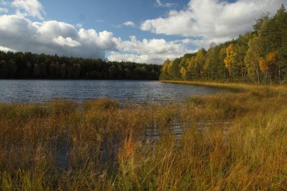 Człuchów i okolice. Rezerwat przyrody Jezioro Krasne 2