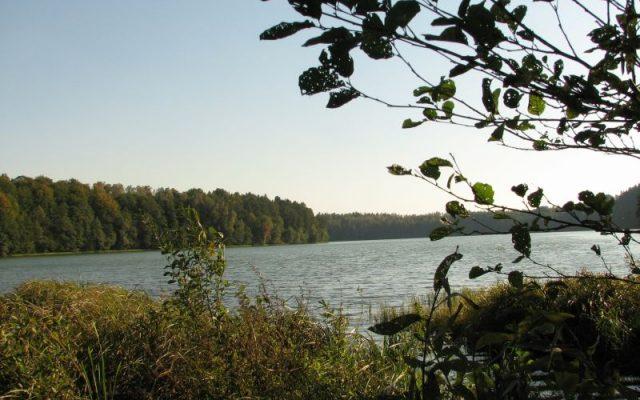 Człuchów i okolice. Obszary krajobrazu chronionego okolic jezior Krępsko i Szczytno. Osiedle Kormoranów 1