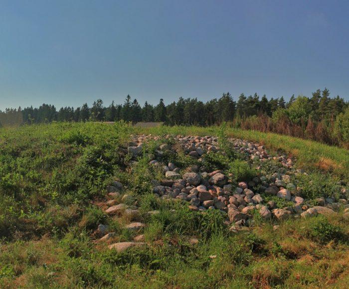 Mieroszyno. Kurhan - fragment cmentarzyska kurhanowego z epoki brązu