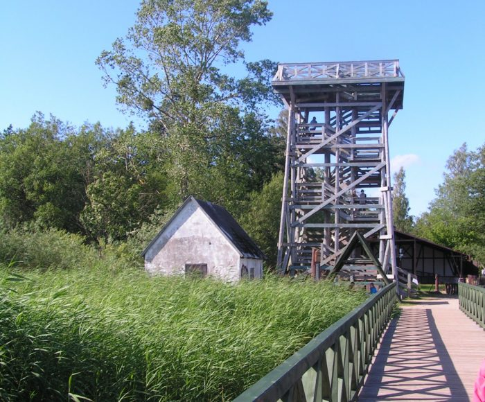 Rąbka – wieża widokowa w Słowińskim Parku Narodowym