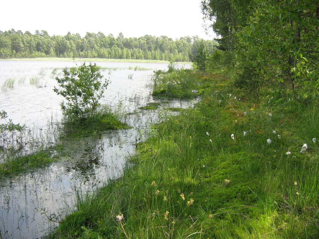 Człuchów i okolice. Rezerwat przyrody Jezioro Krasne