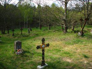 Zabytkowy cmentarz słowiński w Klukach Źródło: Wikipedia.org Autor: Mikołaj Kirschke