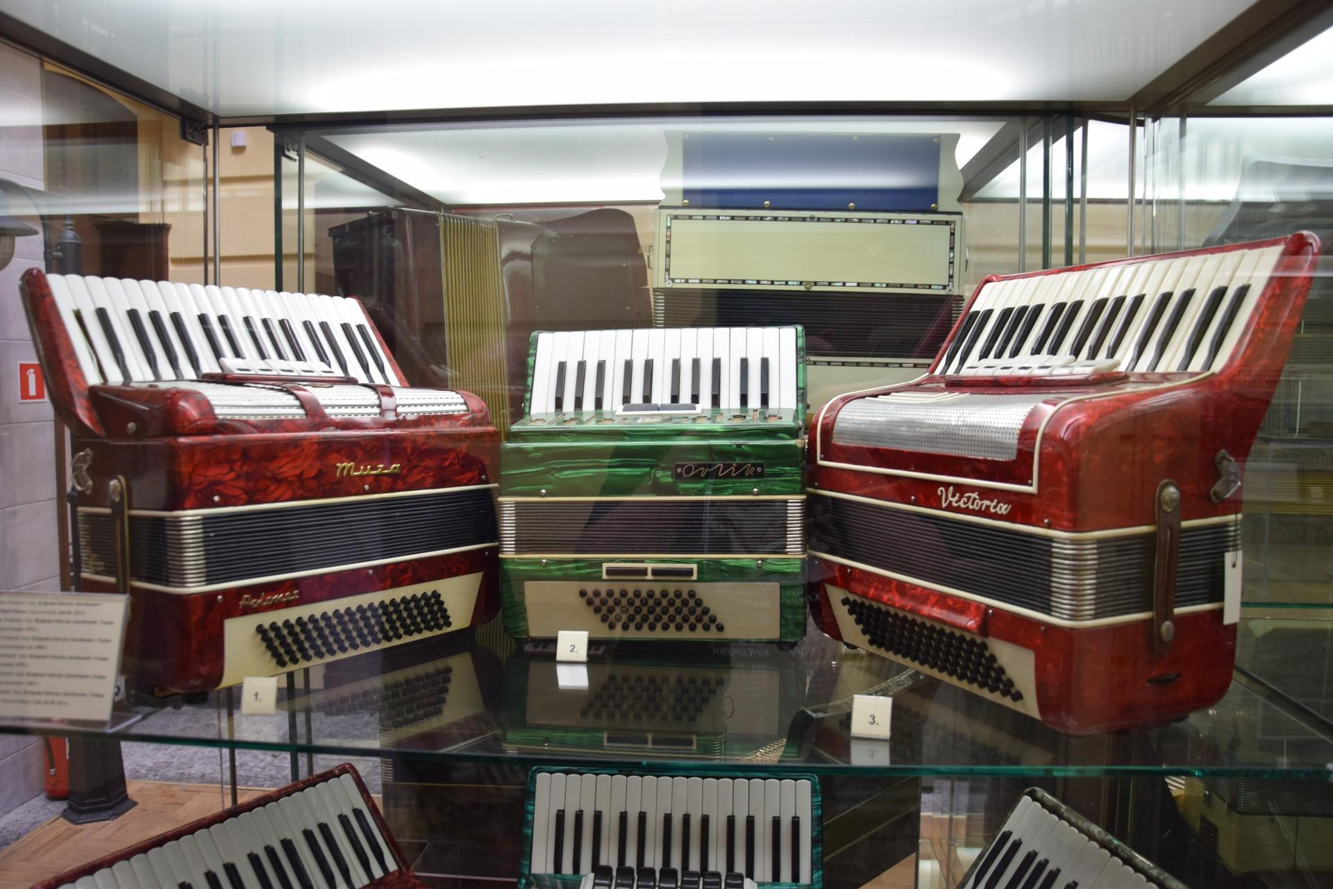 Kościerzyna. Muzeum Akordeonu – kwecz, świnia czy kaloryfer? 3