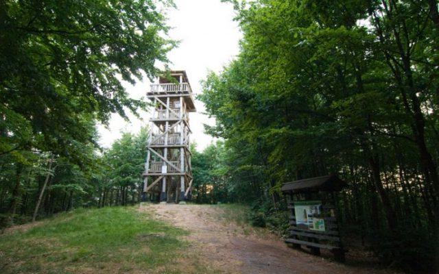 Góra Siemierzycka. Wieża widokowa