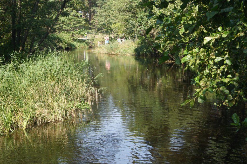 Dębki, rzeka Piaśnica