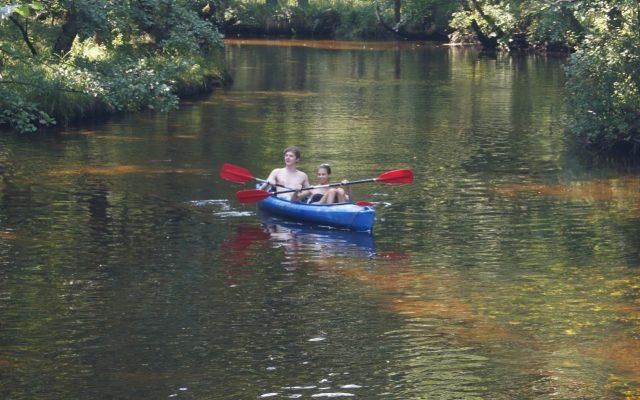 Rezerwat przyrody Piaśnickie łąki - zielone obszary przy rzece Piaśnicy 1