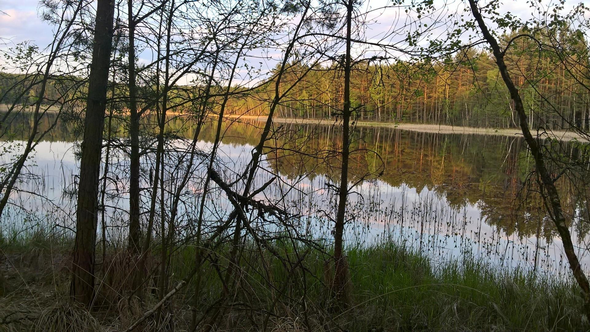 Człuchów i okolice. Rezerwat jeziora Sporackie i Bardze Małe 2