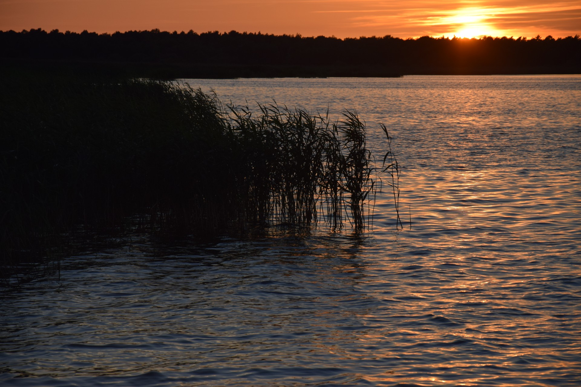Gmina Smołdzino, Słowiński Park Narodowy. Pustynia na północy 7