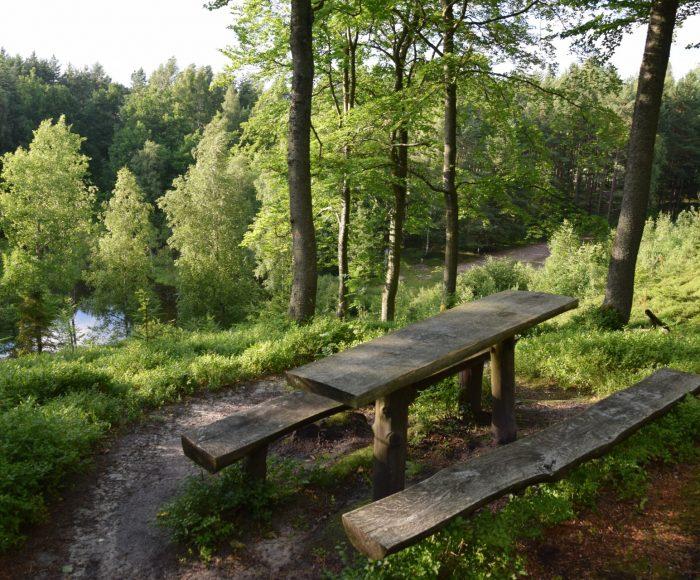 Kamienica Królewska - Łączyno. Najdłuższy szlak rowerowy Kaszubskiego Parku Krajobrazowego