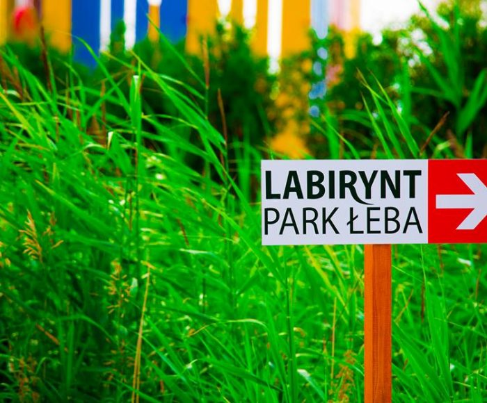 Labirynt Park Łeba – sprawdź swoją orientację w terenie i zagraj w Yengę XXL 1