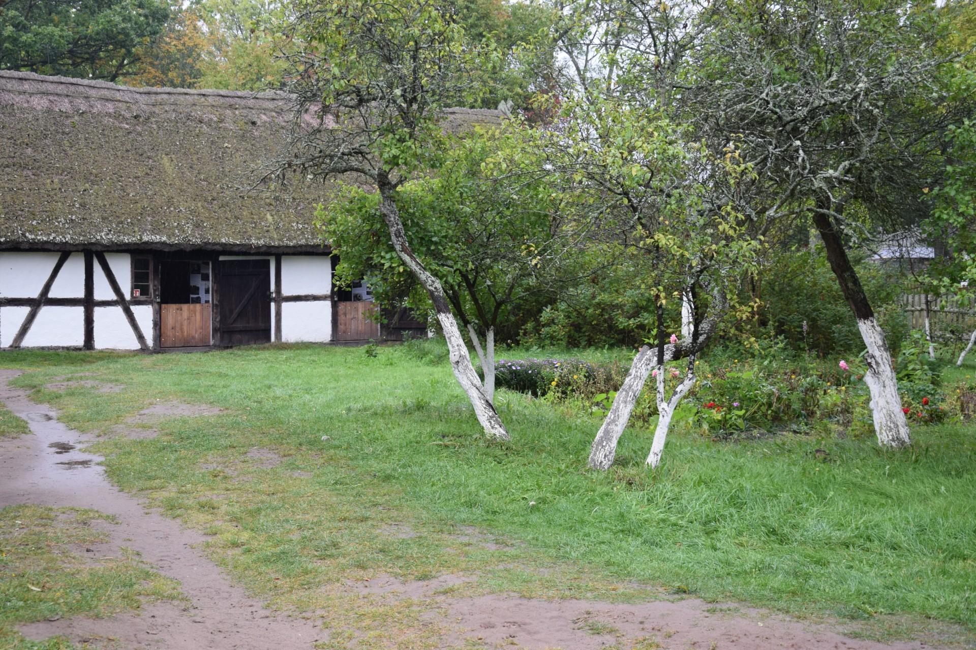 Pomyślunki wiatrem i deszczem smagane. Słowiński Park Narodowy 19