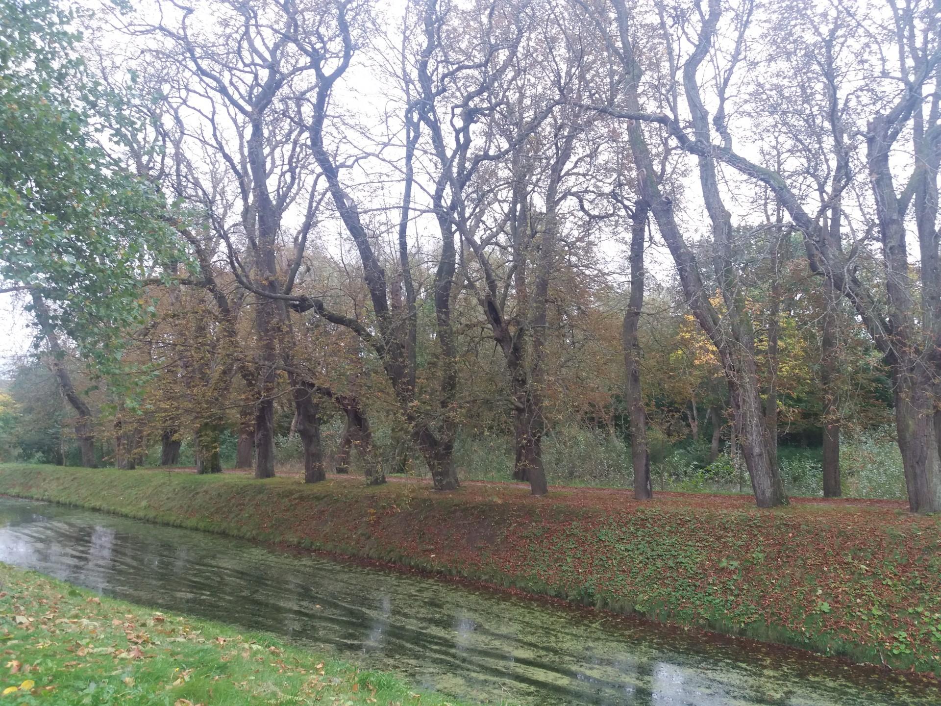Zamek w Krokowej. Fot. Zuzanna Musik/Magazyn Kaszuby