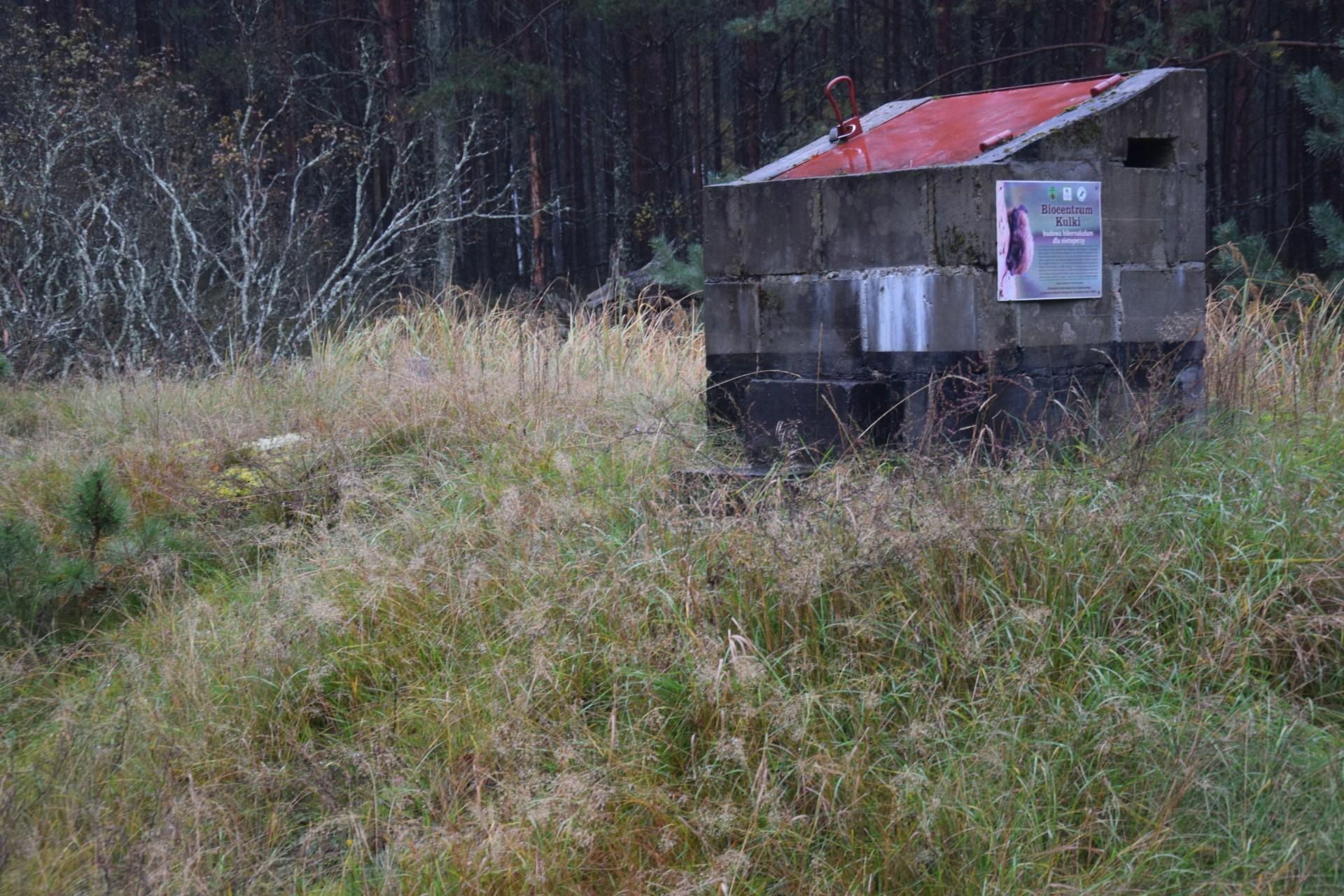 Osada Kulki. Hibernakulum. Tam pod ziemią zimuja nietoperze. Fot. Tomasz Słomczyński/Magazyn Kaszuby