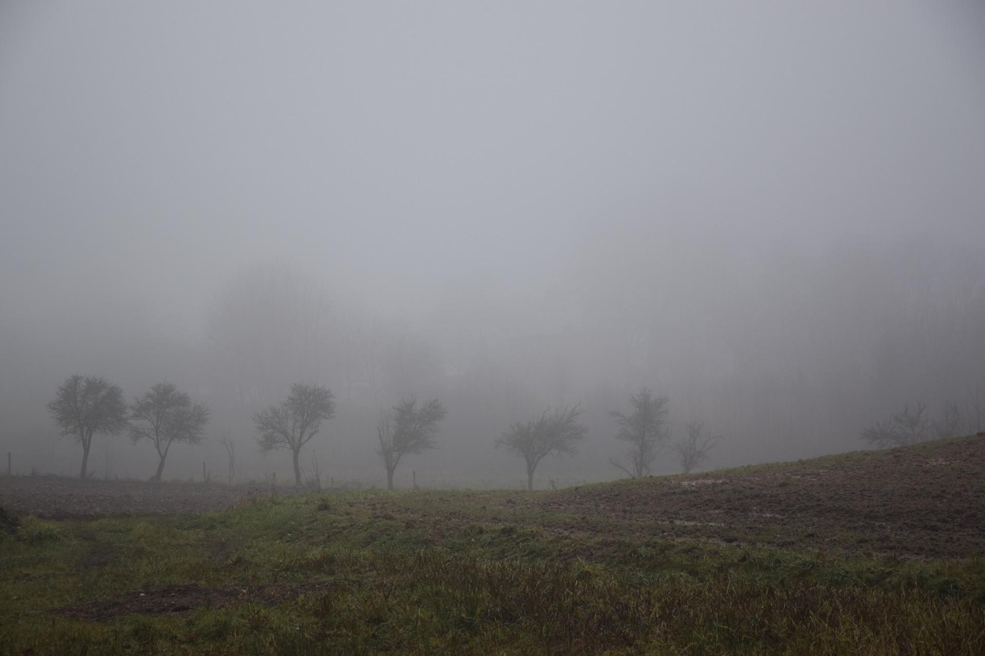 Okolice Chochowatki. Gdzieś tam w dali - jez. Rekowo. Fot. Tomasz Słomczyński/Magazyn Kaszuby