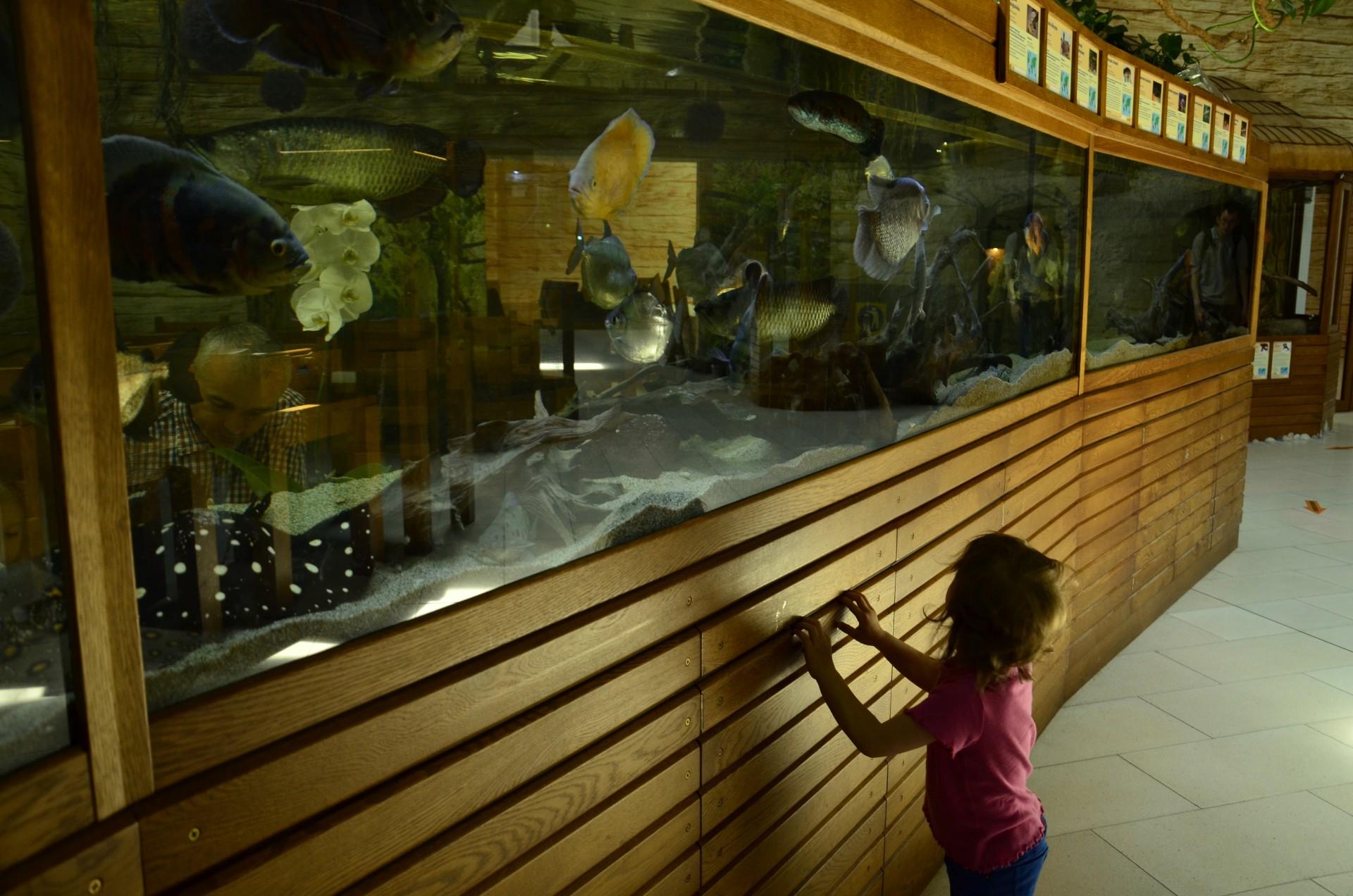 Zoo w Tuchlinie, fot. Adrianna Darznik