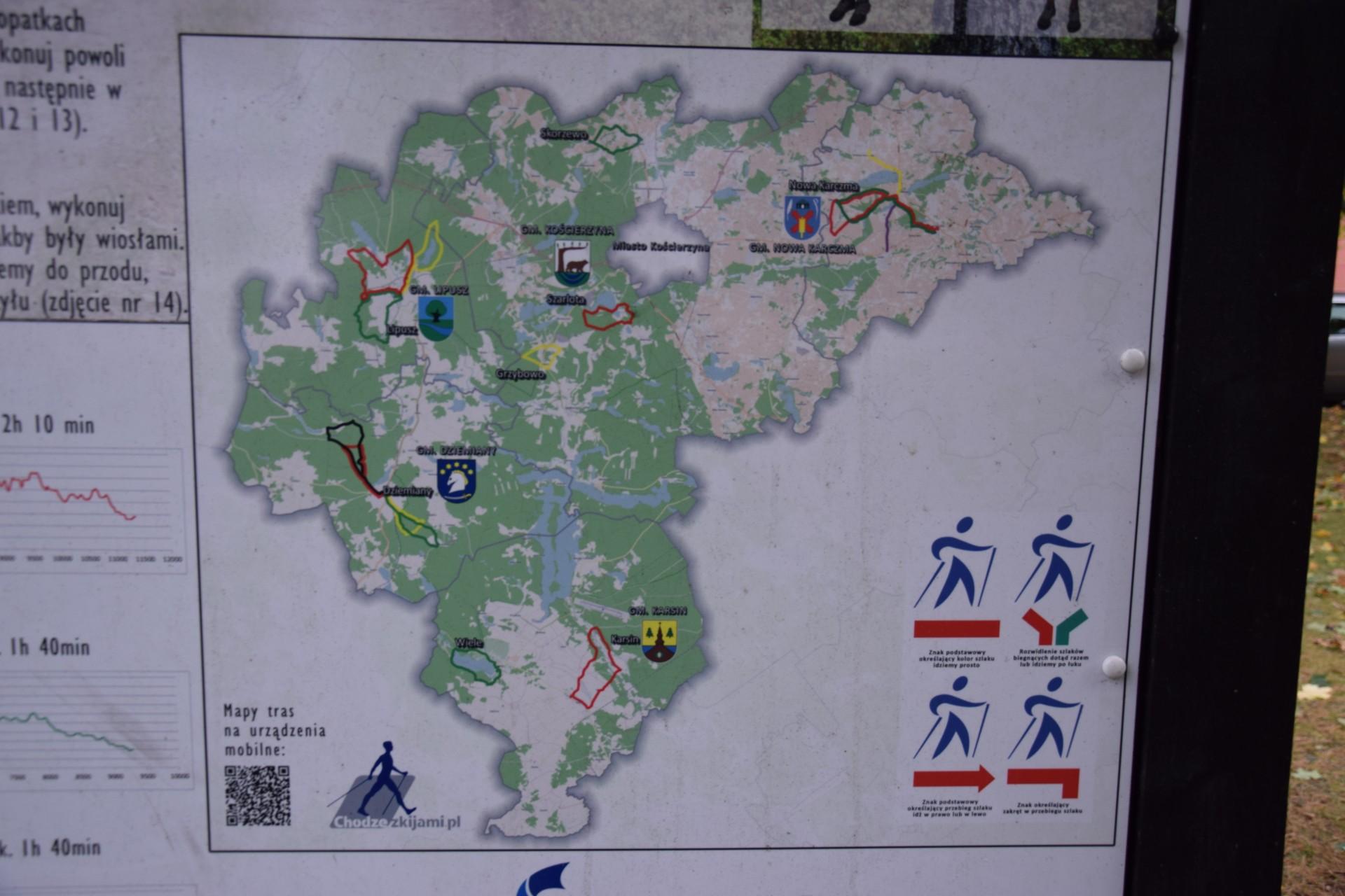 Stolemowe Szlaki nordic walking, fot. T. Słomczyński/ Magazyn Kaszuby