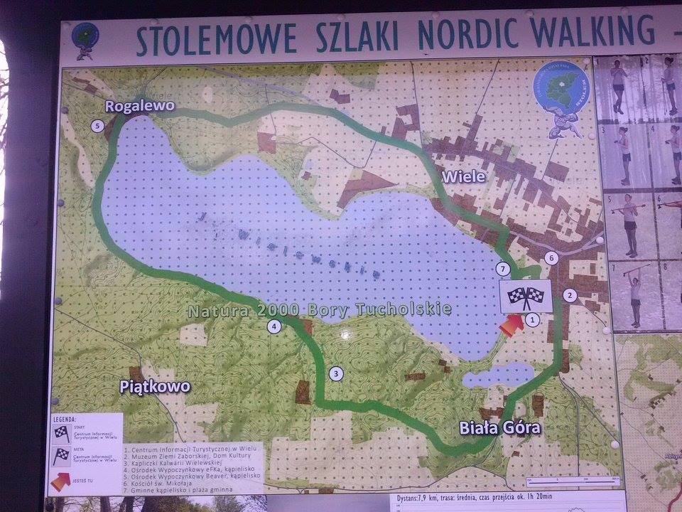 Gmina Karsin. Stolemowe Szlaki Nordic Walking