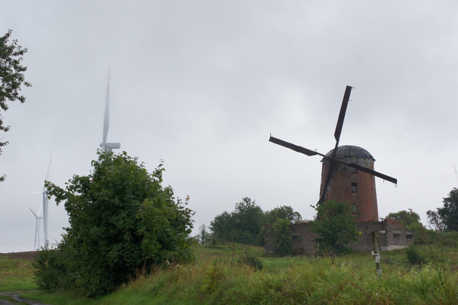 Zabytkowy wiatrak w towarzystwie wiatraków współczesnych. Fot. Patrycja Momot/Magazyn Kaszuby