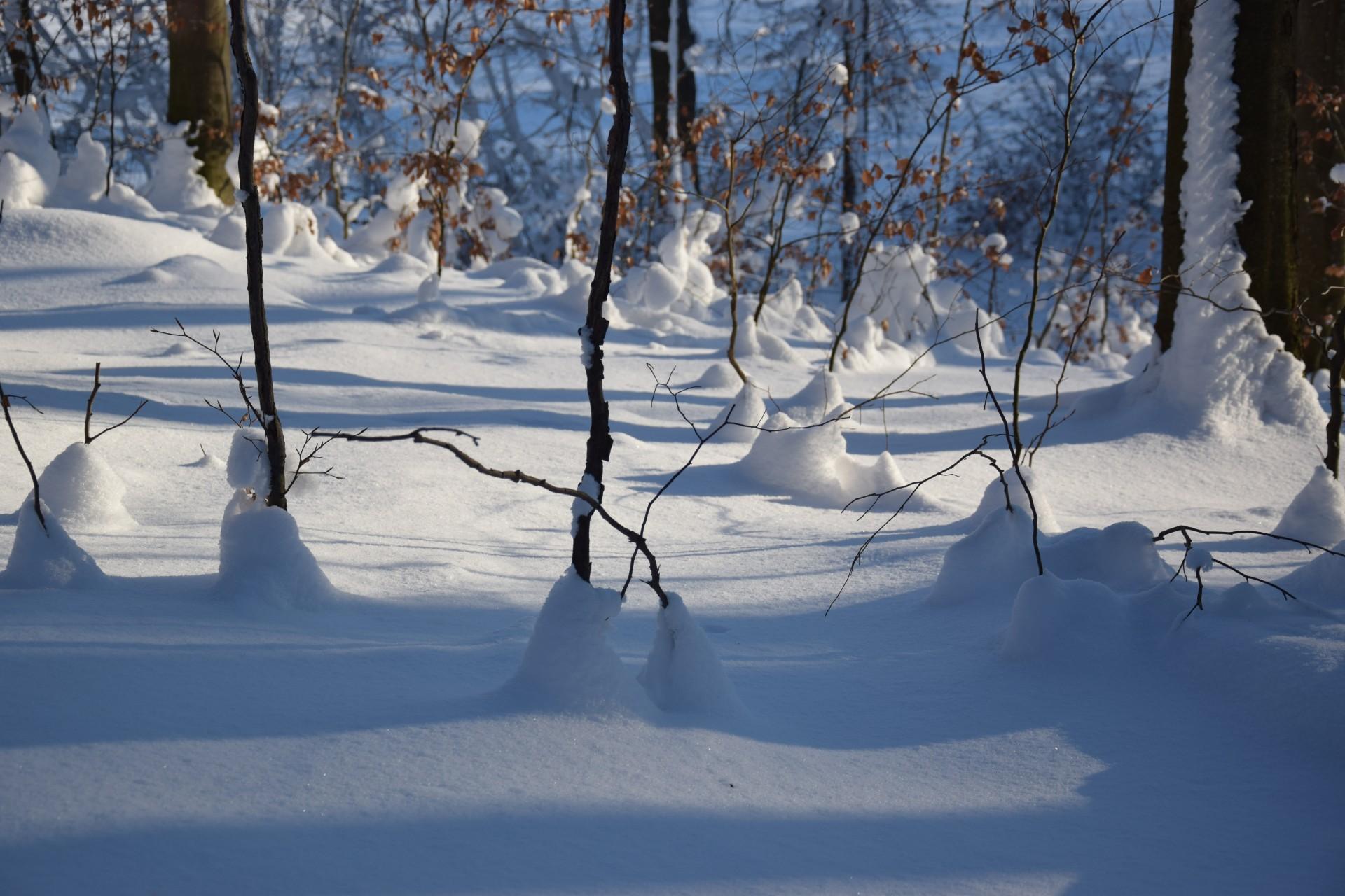 Ośnieżone szczyty... Kaszub [FOTOGALERIA, FILM] 47