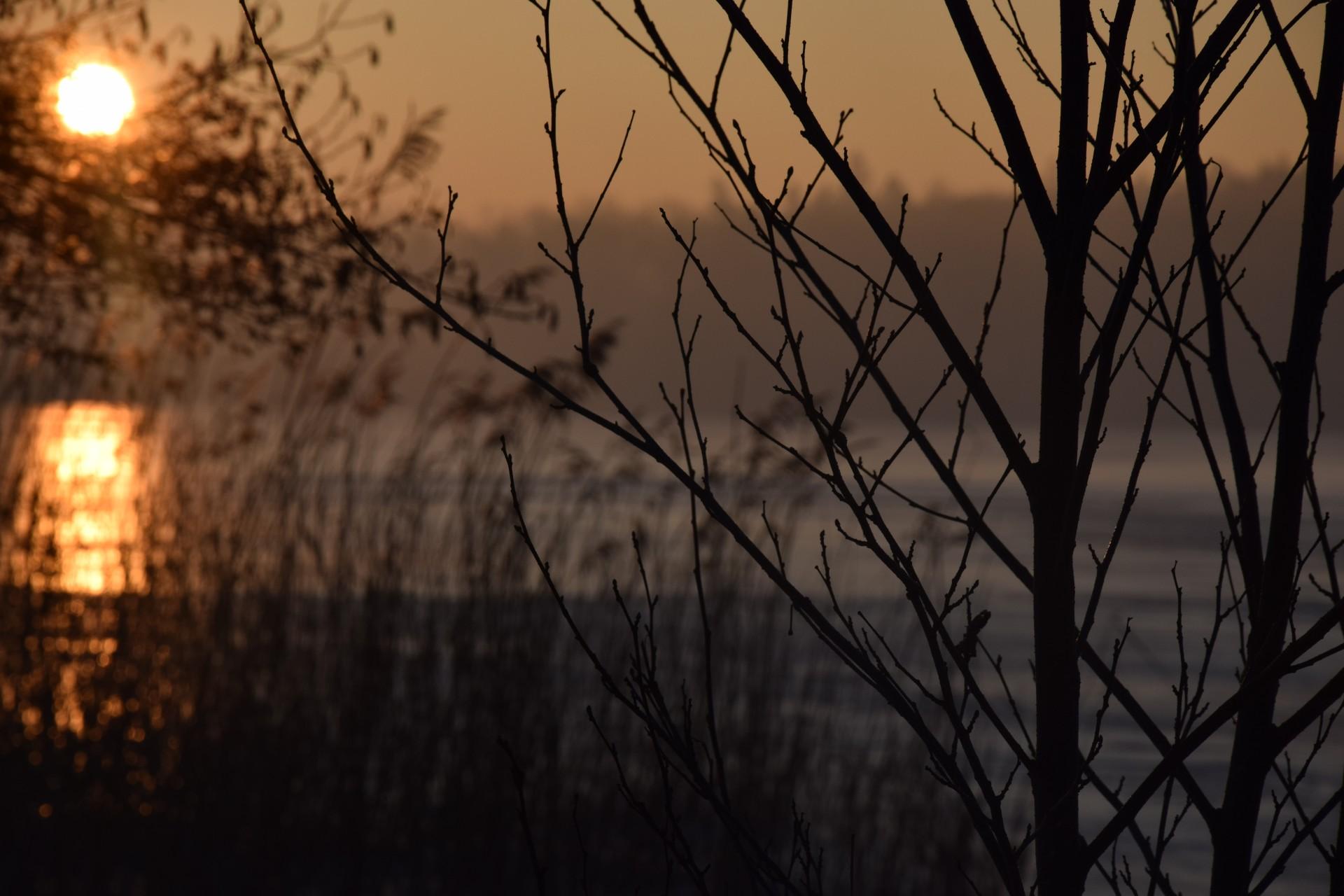 Mroźny świt nad Klasztornym [FOTOGALERIA] 9