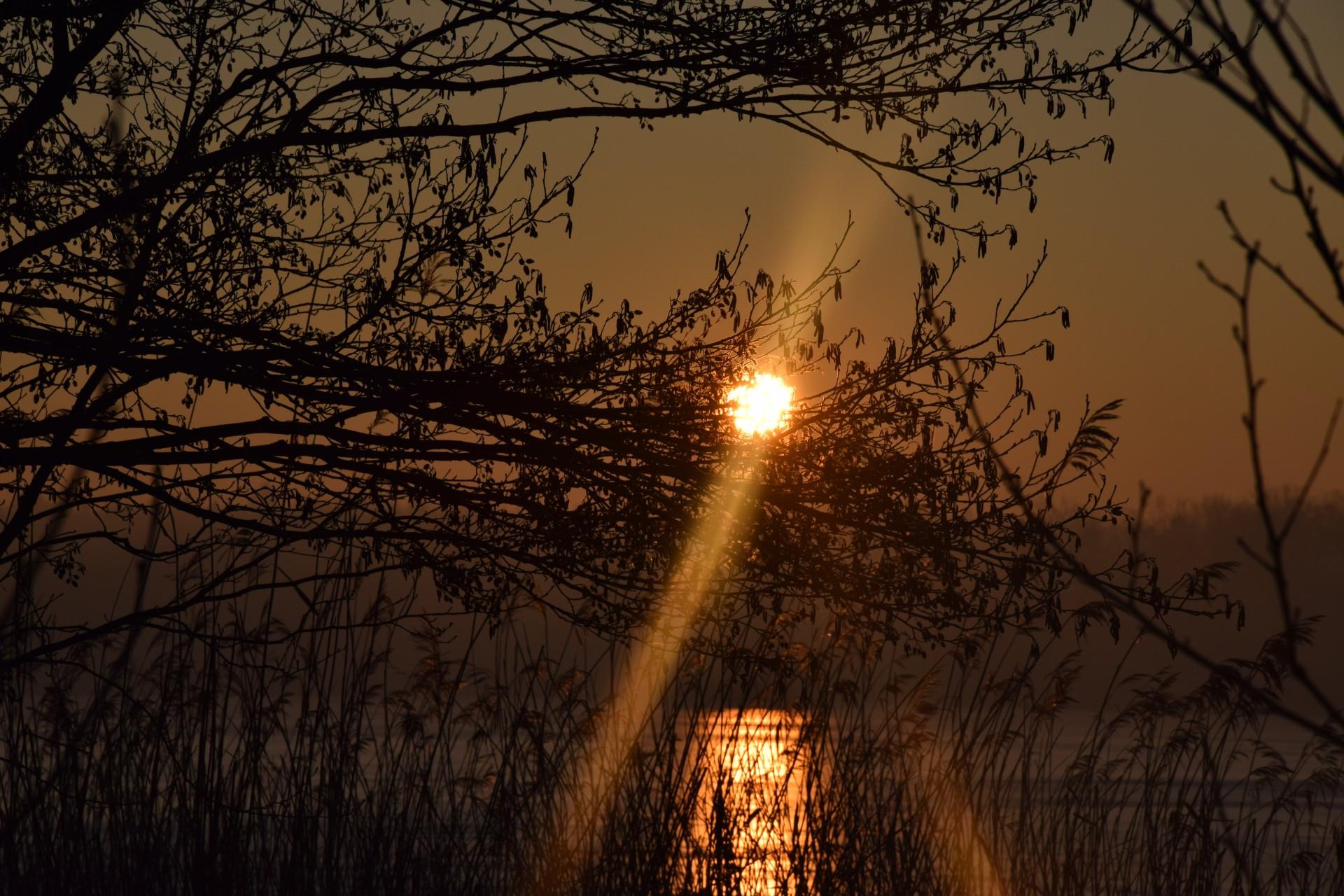 Mroźny świt nad Klasztornym [FOTOGALERIA] 4