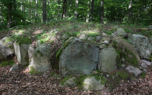 Uniradze. Starożytne cmentarzysko kurhanowe