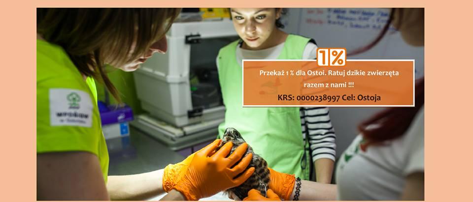 Pomorski Ośrodek Rehabilitacji Dzikich Zwierząt Ostoja w Pomieczynie prosi o wsparcie. Fot. Karol Stańczak