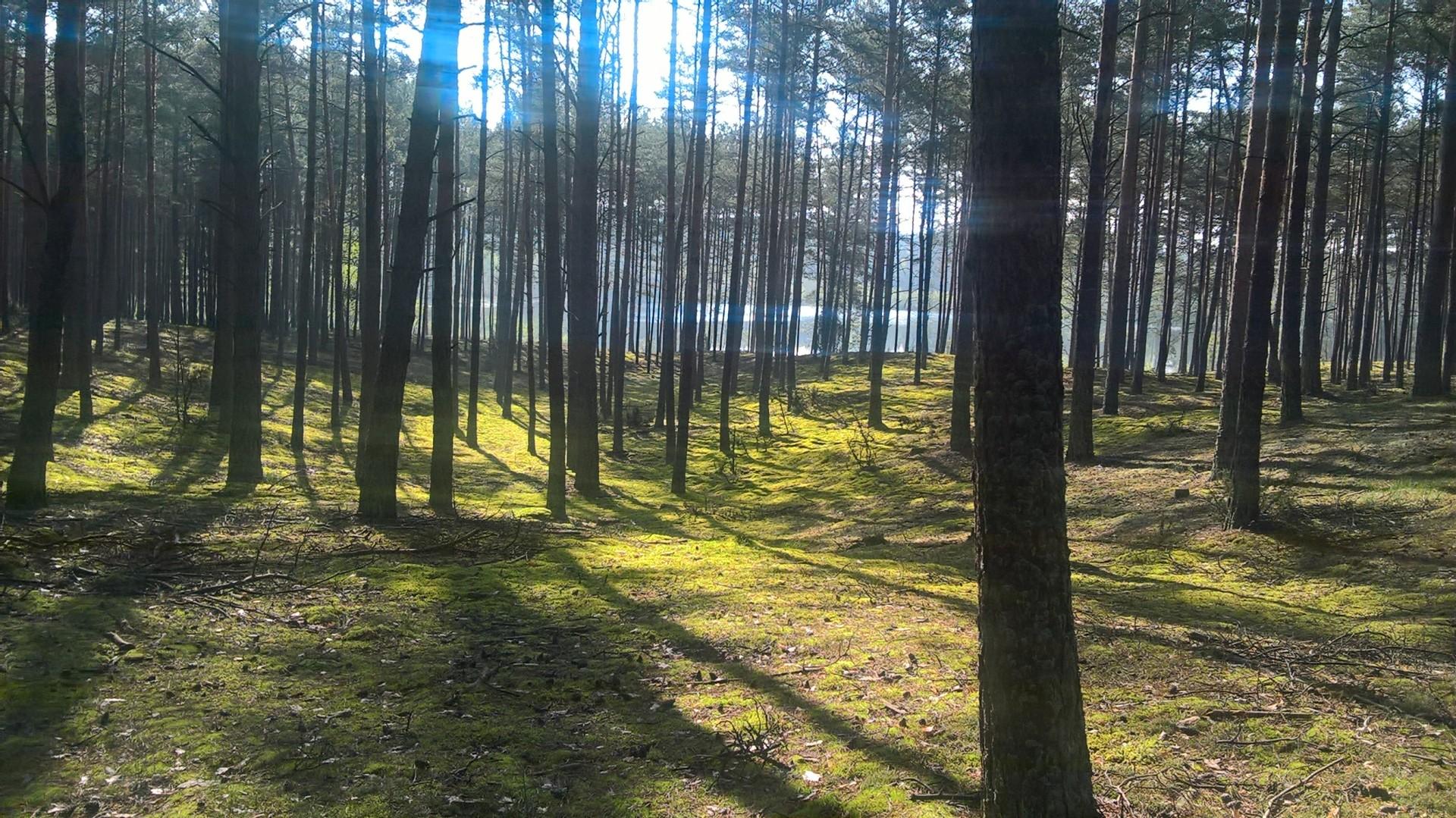 Wędrówka po Kaszubach - wanoga. Dzień trzeci. Fot. Tomasz Słomczyński/Magazyn Kaszuby