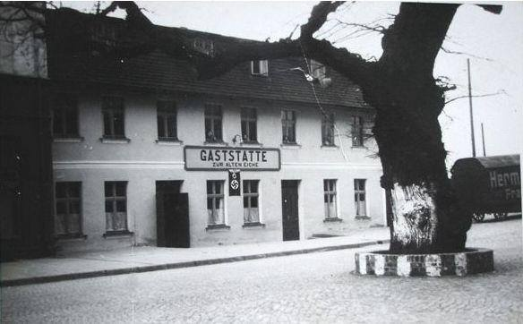 Kaszubska Gdynia. Kaszubski dąb 6