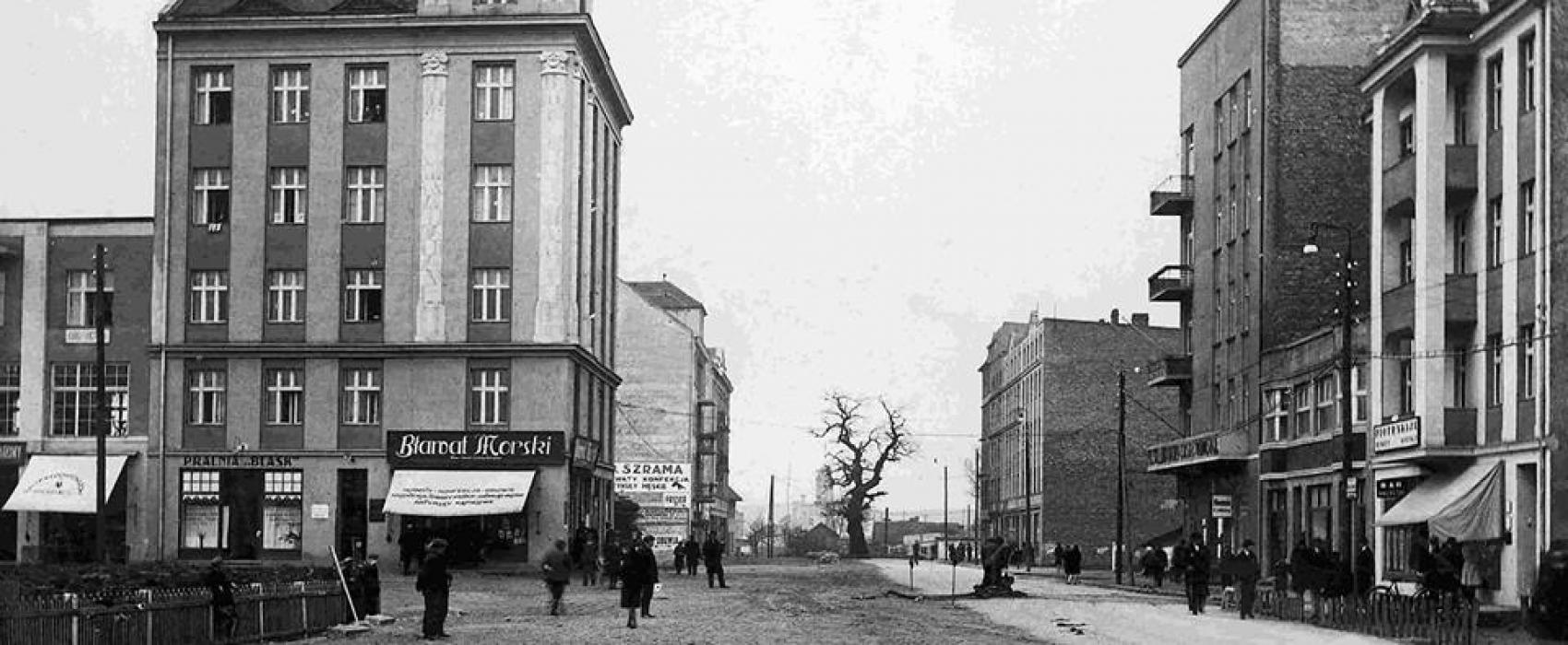 Kaszubska Gdynia. Kaszubski dąb 8
