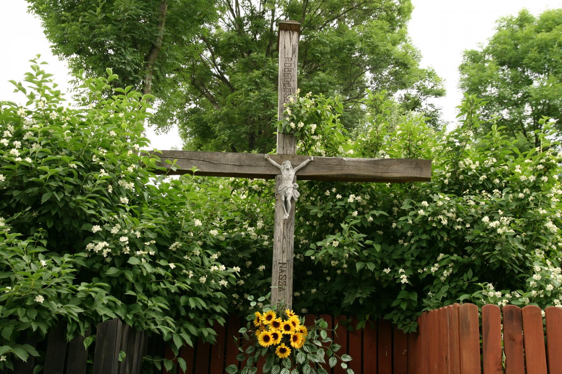 Kaszubskie ogrody. Jakie kwiaty tu rosną? 3