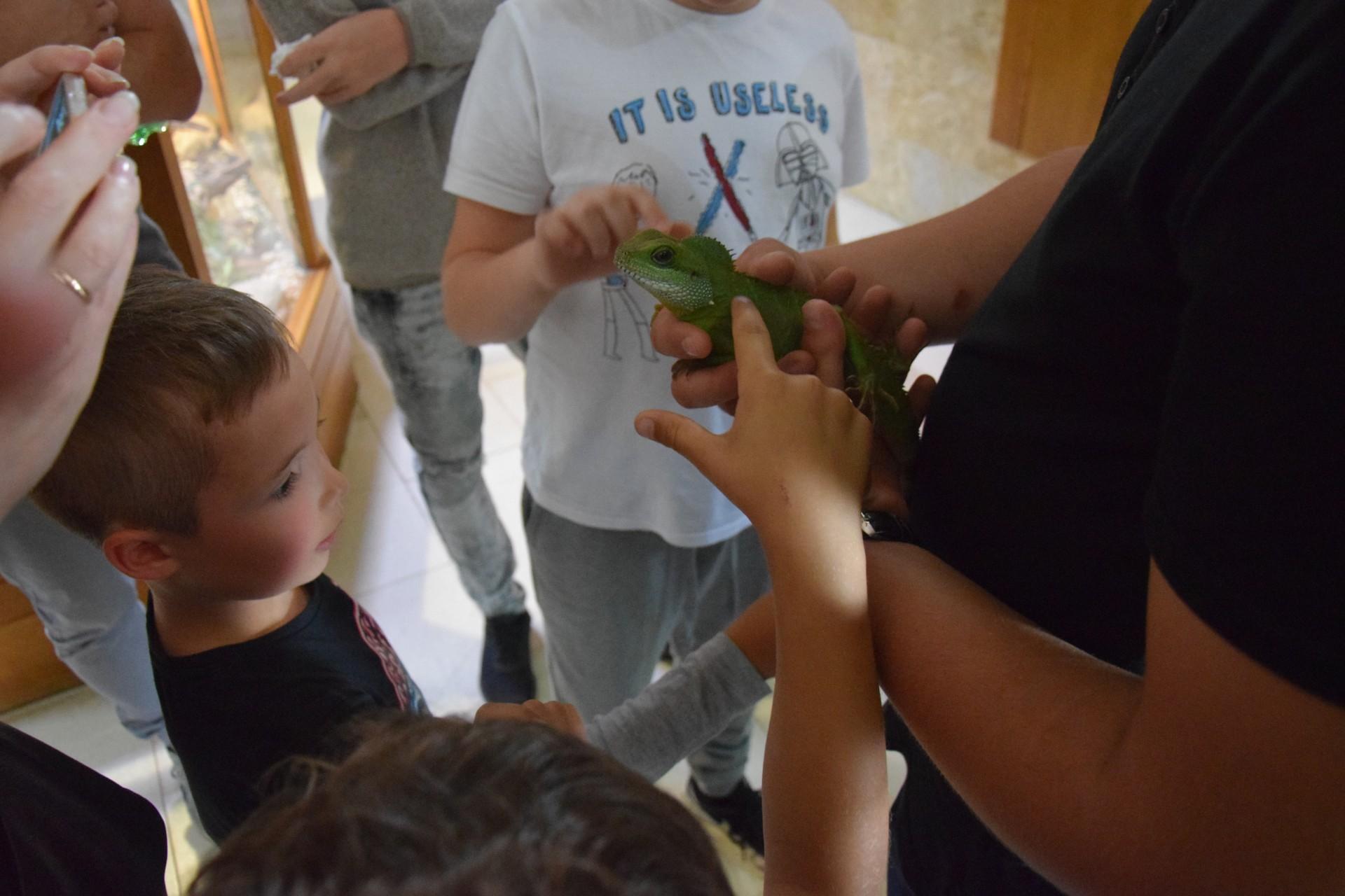 Kaszuby dla dzieci. ZOO w Tuchlinie. Egzotyczne Kaszuby. Fot. Tomasz Słomczyński/Magazyn Kaszuby