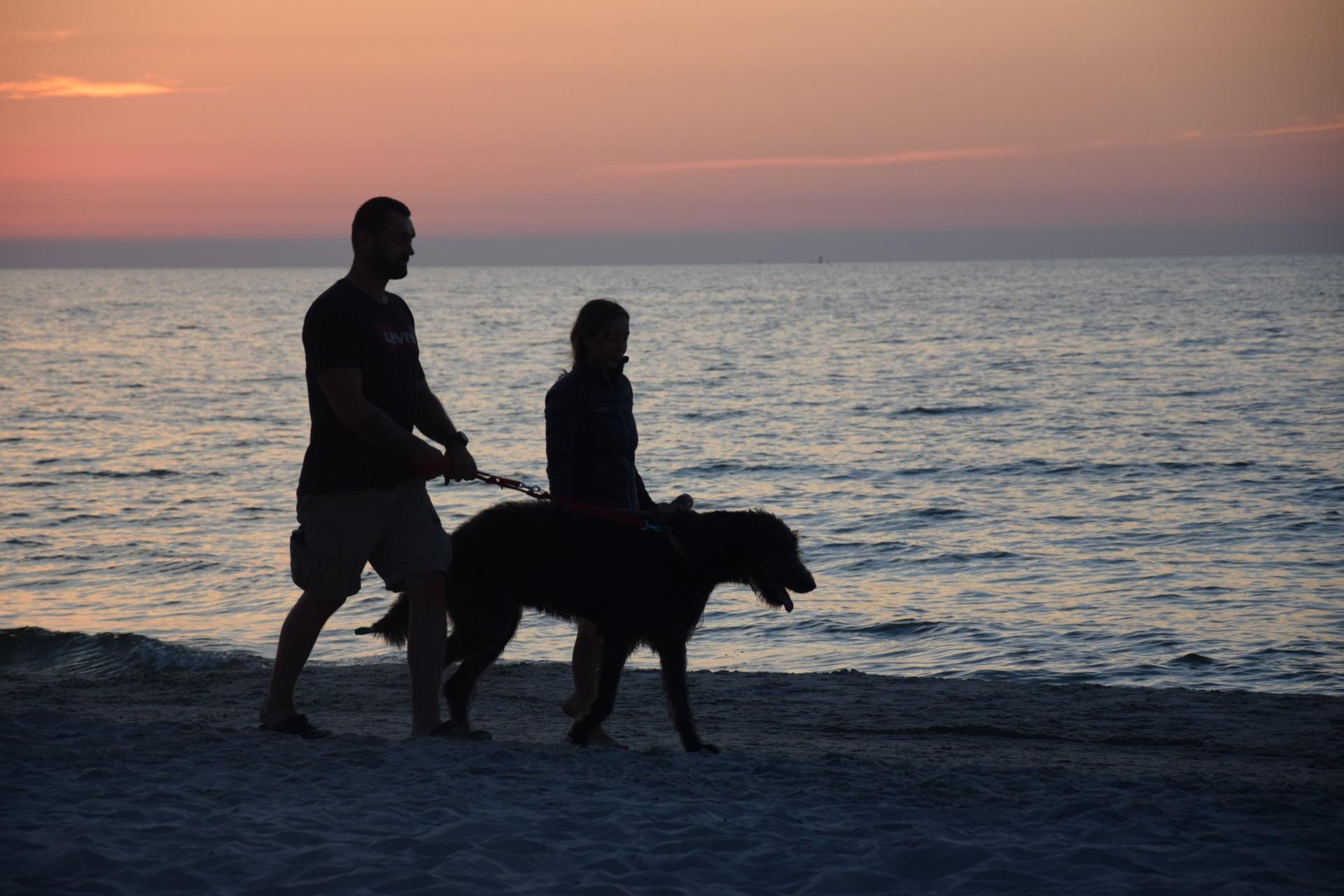 Kopalino, plaża Nieopowiedziane historie [FOTOREPORTAŻ] 12
