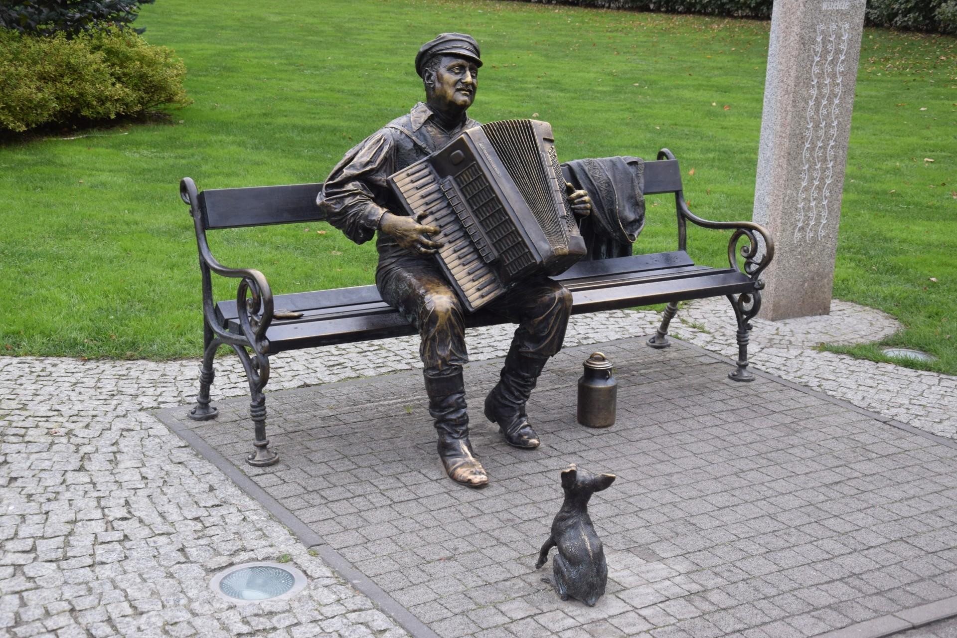Foki w parku w Wejherowie. To dobry pomysł? 2