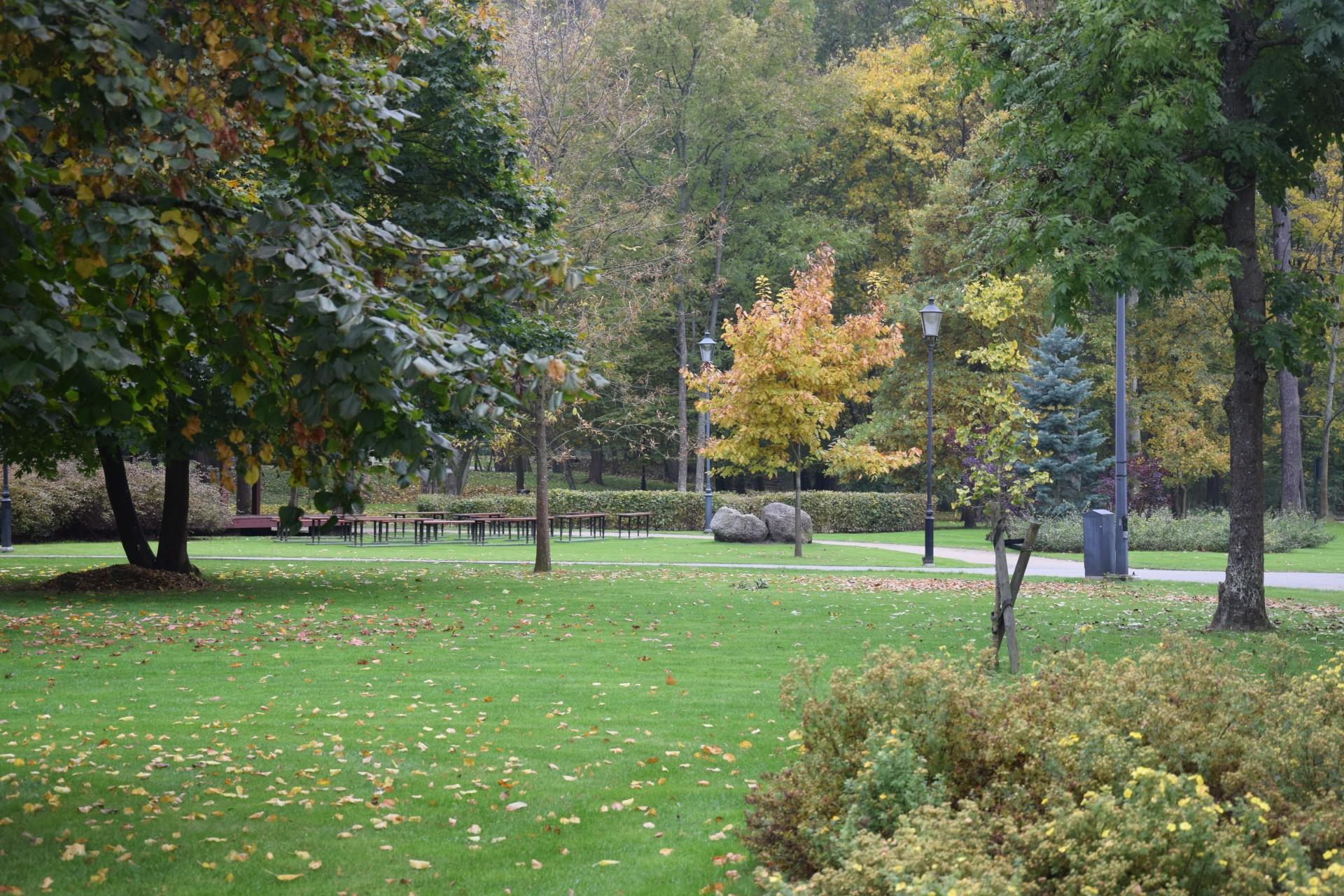 Foki w parku w Wejherowie. To dobry pomysł? 6